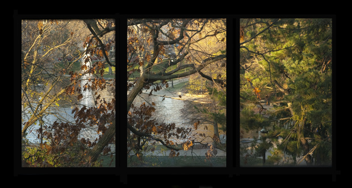 Mirror Lake Window